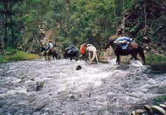 Bicentennial National Trail
