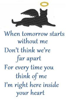 Found on Pinterest on 8-27-16.