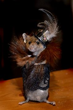 Taxidermy Fashion Mouse by Deni Kendig of Sparrowsongs