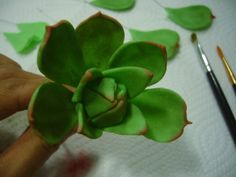 How to make wired Sugar Succulents - by Donna Dolendo @ CakesDecor.com - cake decorating website