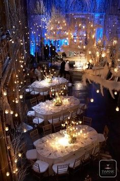 myfairweddingblog: Winter Wonderland! If you want to have a winter wonderland theme don%u2019t feel like snow is your only option. Use birch trees and white and blue colors.� How gorgeous is this wedding reception setting!