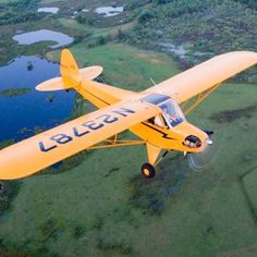 Piper Super Cub - The tiger within !!!