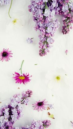 10 Free Floral SmartPhone Wallpapers - 2 different tints of each!