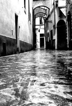 Linee Firenze
