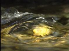 water surface current - Google Search