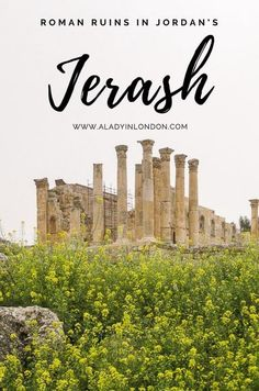 Jerash Roman Ruins - A Guide to Visiting the Roman Ruins in Jerash South Gate, London Blog, Spring Wildflowers, Jordan Travel, Walk Past, Nature Reserve, Ancient Romans, Red Poppies, Northern California