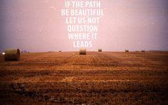 beautiful path. 365q, julian bialowas.