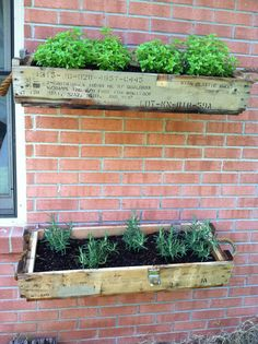 Herb Planters I made from antique WWII Ammo boxes.
