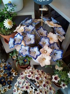 One year of work by the elders of Israel. ceramic flowers planted in the Israel museum in Tel Aviv. Clay Art Projects, Ceramics Projects, Clay Crafts, Diy And Crafts, Slab Pottery, Ceramic Pottery, Pottery Art, Ceramic Art, Ceramic Flowers