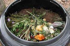 Veja o passo-a-passo do processo de compostagem dos resíduos domésticos
