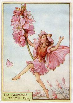 Almond Blossom Flower Fairy Vintage Print, c.1950 Cicely Mary Barker Book Plate Illustration