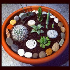 Succulents and Stones | My new little garden available here | Flickr