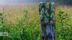 Country Web by Jeff Turner on 500px