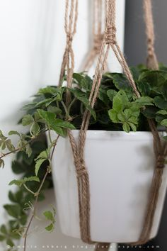 How to make a plant hanger in macrame                                                                                                                                                     More