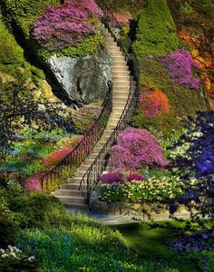 Stairway to Heaven. Butchart Gardens in Brentwood Bay (near Victoria) on Vancouver Island in British Columbia, Canada Stairway To Heaven, Beautiful Places, Beautiful Pictures, Beautiful Stairs, Beautiful Flowers, Beautiful Scenery, Amazing Photos, Prettiest Flowers, Beautiful Beach