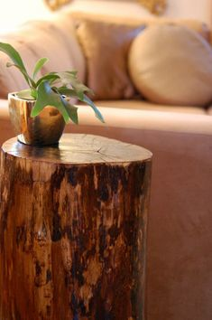 Wood gives such a great homey feeling.  Tree stumps as coffee tables both look great, and are a guaranteed talking point!