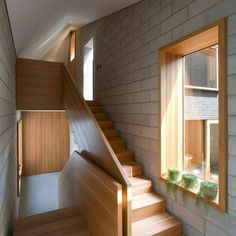 solid timber stair and balustrade