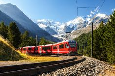 A guide to 8 of the best Switzerland scenic train trips to add to your itinerary. If you love traveling by train this is an essential guide to help plan your Swiss travel itinerary! Europe Day, Jungfraujoch, Swiss Travel, See The Northern Lights, Riomaggiore, Train Journey, Swiss Alps, Train Rides, Train Trip