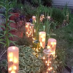 Icicle light strand in bottles. People always ask if my wine bottle border lights up. Too late for the ones already planted, but I have more I can do by the shed!