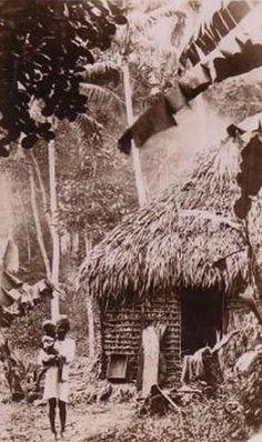 HISTORICAL FIJI POSTCARDS 30