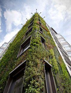 jardin vertical PatrickBlanc Francia                                                                                                                                                                                 Más