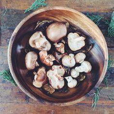 Variedad de hongos para mi risotto | Confieso que Cocino
