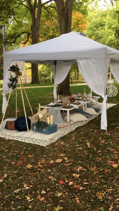 Picnic Rentals in Grand Rapids, MI Baby Shower Brunch, Baby Shower Fall, Fall Baby, Birthday Sleepover Ideas, Picnic Birthday, Picnic Style, Picnic Set, Romantic Home Dates, Boho Garden Party