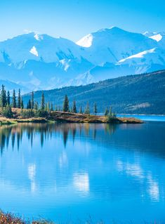 A vast area of spectacular scenery, abundant wildlife, and outdoor adventures, Denali National Park is a paradise for nature lovers and outdoor enthusiasts. Cheap Flight Deals, Cheap Flight Tickets, Elle Travel, Online Flight Booking, Aspen Snowmass, Book Cheap Flights, Plan Your Trip, National Parks, Scenery
