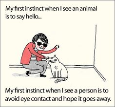 Funny pictures about My First Instinct When I See An Animal. Oh, and cool pics about My First Instinct When I See An Animal. Also, My First Instinct When I See An Animal photos. Someecards, Introvert Humor, Introvert Problems, Funny Quotes, Funny Memes, Quotes Pics, Hair Quotes, True Memes, Quotes Images