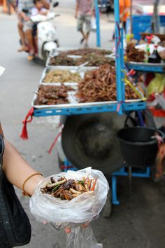 How to Eat Scary Insects, Worms, and Bugs in Thailand