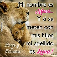 Mamá Lion Quotes, Me Quotes, Motivational Quotes, Inspirational Quotes, Lion Love, Funny Phrases, Badass Quotes, Business Motivation, Love Images