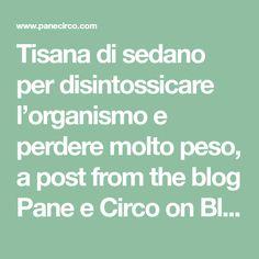 Tisana di sedano per disintossicare l'organismo e perdere molto peso, a post from the blog Pane e Circo on Bloglovin'