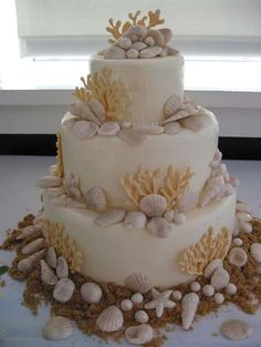sea shell wedding cakes 1000 images about cakes on cakes 19712