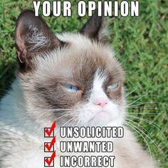 Grumpy Cat Your Opinion
