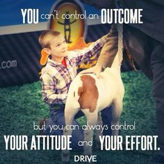 You can always control your attitude and your effort. Photo courtesy goes to Drive Livestock. Livestock Judging, Showing Livestock, Ffa, Show Goats, 4 H Club, Teacup Pigs, Show Cattle, Mini Pigs, Country Quotes