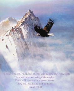 Título: Soaring wings Pintura del artista: Robert Foster, vía fineartamerica.com