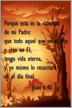 Palabras de Jesus