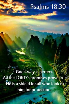 Psalms - God's way is perfect. All the Lord's promises prove true. He is a shield for all who look to him for protection. Prayer Scriptures, Faith Prayer, Prayer Quotes, Faith In God, Healing Scriptures, Biblical Quotes, Bible Verses Quotes, Spiritual Quotes, Bible Psalms