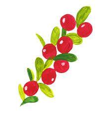 puolukka - Google-haku Folk Art, Art Projects, Flora, Clip Art, Illustration, Google, Garden, Beautiful, Garten