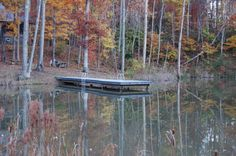 The Dock in the back of our cabin by the Lake Horse Farms, Kentucky, Outdoor Living, Cabin, Horses, Outdoor Life, Cabins, Cottage, The Great Outdoors