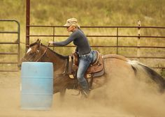 someday ill own a barrel horse and a beautiful pleasure horse<3