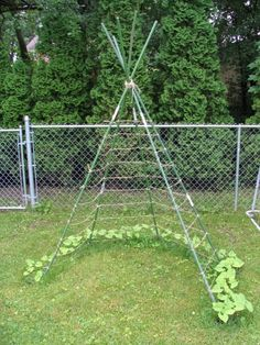 I'm thinking pumpkins and squash! Tie several poles together, lace with twine (I will use chicken netting for strength if I use it for pumpkins/squash)