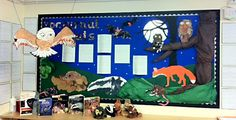 Nocturnal Animals display Diurnal Animals, Nocturnal Animals, School Displays, Classroom Displays, Afraid Of The Dark, Light In The Dark, Dear Zoo Book, Baby Owls, Owl Babies