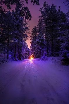 Christmas Lights Wallpaper, Beautiful Winter Scenes, Cool Photos, Beautiful Pictures, Good Night Messages, Winter Scenery, Winter Pictures, Winter Landscape, Nature Scenes