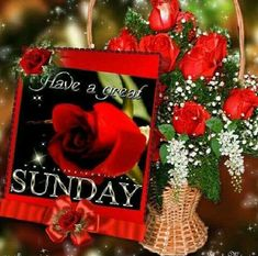 Have A Blessed Sunday, Have A Great Sunday, Weekday Quotes, Sunday Quotes, Good Morning Good Night, Good Morning Wishes, Friday Saturday Sunday, Sunday Morning, Rose Quotes