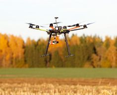 This journalist is embarking on a project that will use unmanned drones to fly over and document large factory animal farms.
