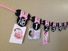 A personal favorite from my Etsy shop https://www.etsy.com/listing/226750563/minnie-mouse-12-month-photo-banner-photo