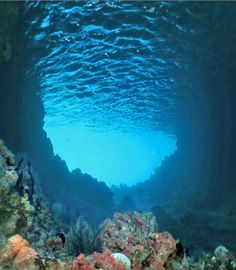 Beautiful Under Water Cave | Read More Info