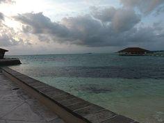 Maldives Maldives Tour, Charles Darwin, Coral Reefs, Seychelles, Islands, Roots, Language, Ocean