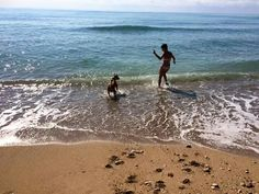 Playa canina de Vinaroz.